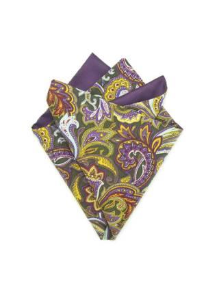 Платок-паше Фиолетовые Огурцы