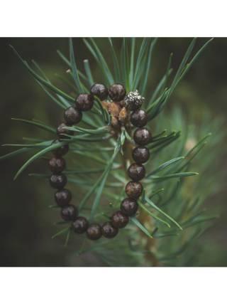 Браслет из натуральных камней Bronze Bear