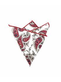 Нагрудный платок белого цвета с красными пейсли из хлопка