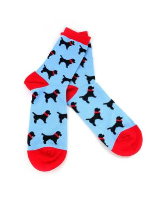 Голубые носки с рисунком собаки