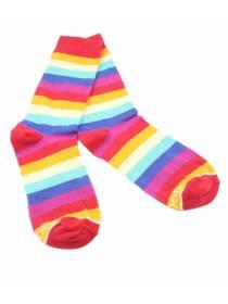 Разноцветные мужские носки в радужную полоску