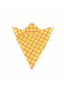 Нагрудный платок желтый в красную клетку из хлопка