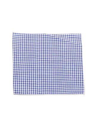 Нагрудный платок синего цвета в клетку